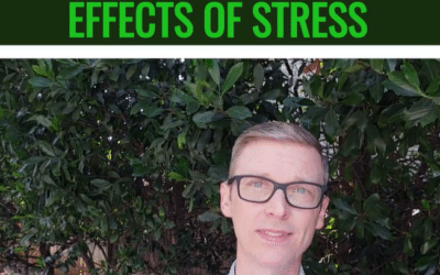 Decreases The Effects Of Stress