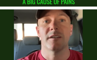 Decreases Inflammation: A Big Cause of Pains